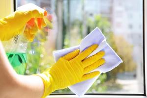 kdo robí profi umývanie okien